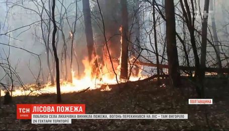 Україна в огні: 24 гектари лісу вигоріло у Полтавській області, а у Кропивницькому тліє сміттєзвалище
