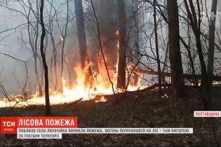 Украина в огне: 24 гектара леса выгорело в Полтавской области, а в Кропивницком тлеет свалка