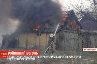 Из-за поджога сухостоя в селе Борятин на Житомирщине сгорели несколько десятков зданий