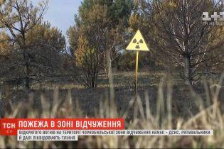 Правоохранители вручили подозрения двум мужчинам, которых считают виновными в чернобыльских пожарах