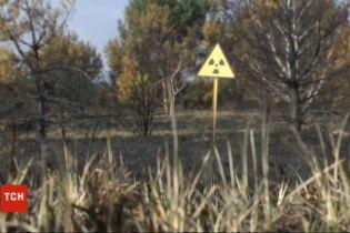 Дым без огня: спасатели продолжают ликвидировать тление в Чернобыльской зоне
