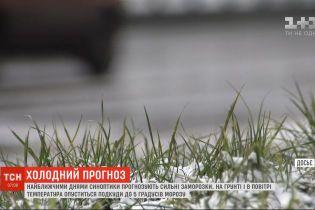 Найближчими днями синоптики прогнозують сильні заморозки