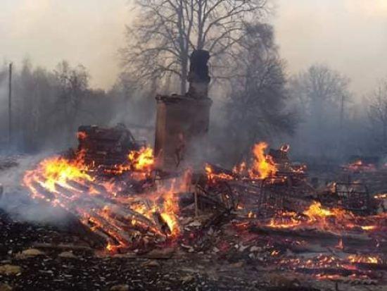 Масштабні пожежі у Житомирській області: горять десятки гектарів лісів та села