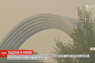 На зміну пиловій бурі до столиці прийшов їдкий дим: влада закликає містян не відчиняти вікна