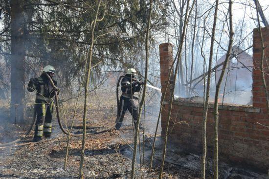 Локалізували пожежі на 2000 га: у ДСНС та Держлісагентстві розповіли про ситуацію в Житомирській області