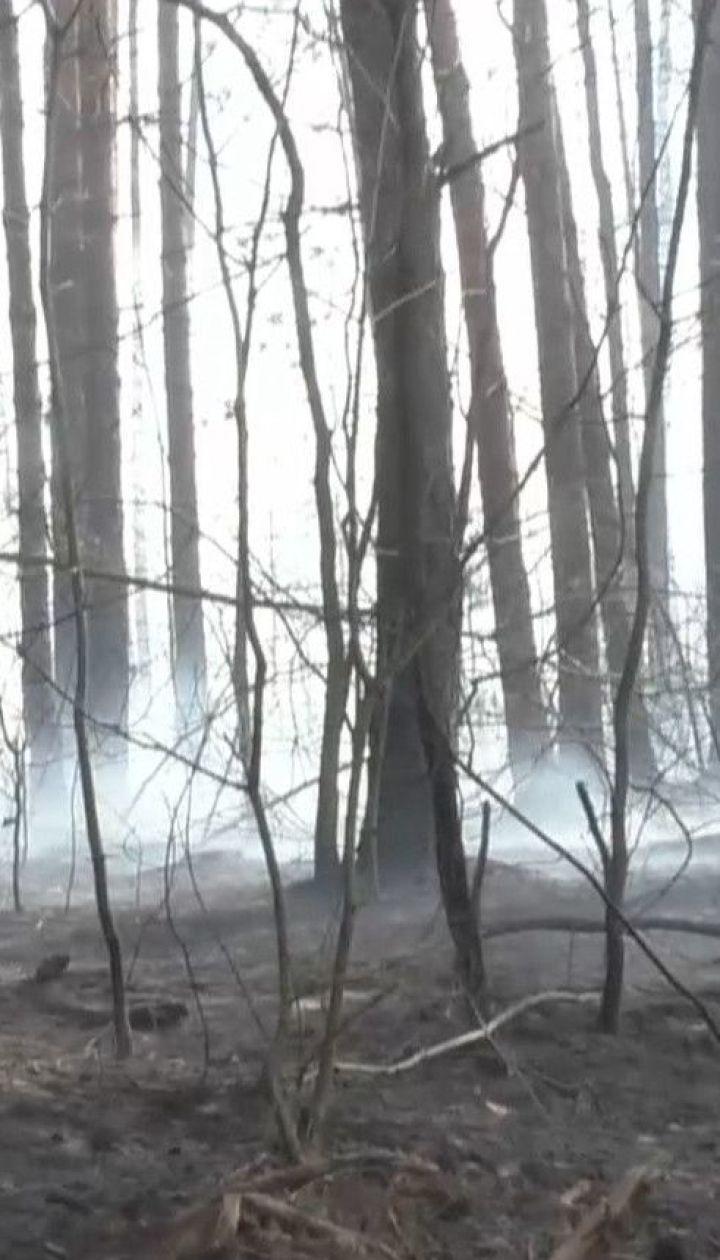 Житомирська область у вогні: навколишні села вигоріли до цурки через паліїв трави