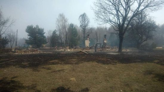 Постраждалі в пожежах в Житомирській та Київській областях отримають грошову допомогу