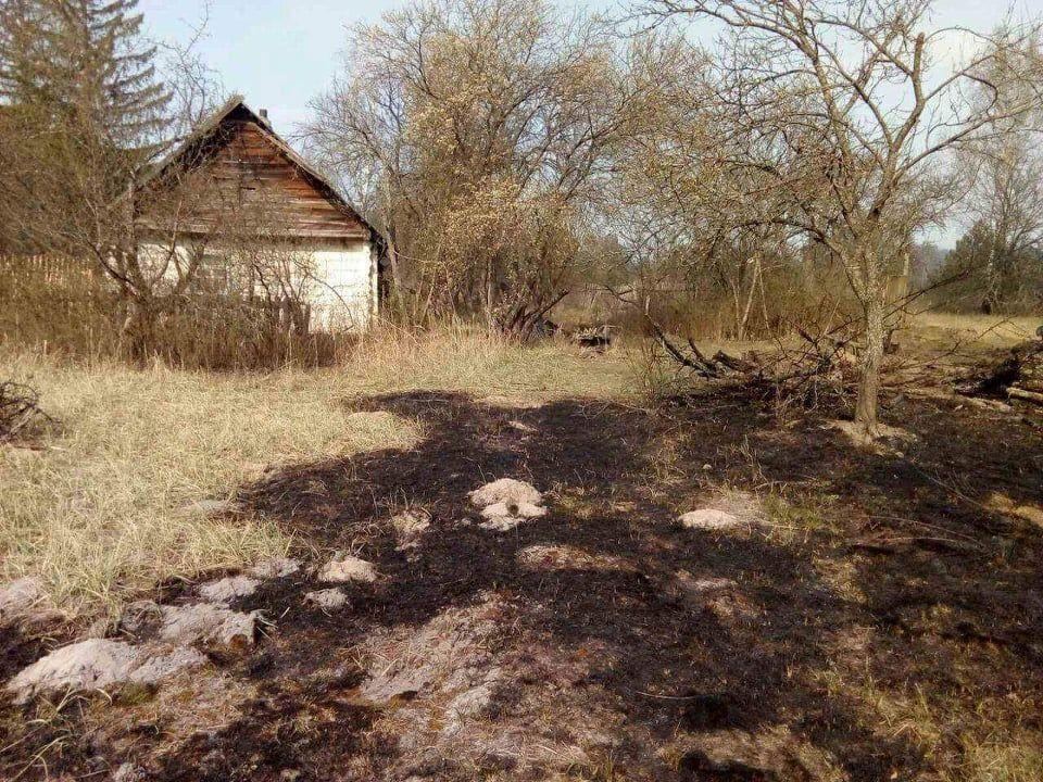 Наслідки пожежі у Житомирській області, село Личмани_2