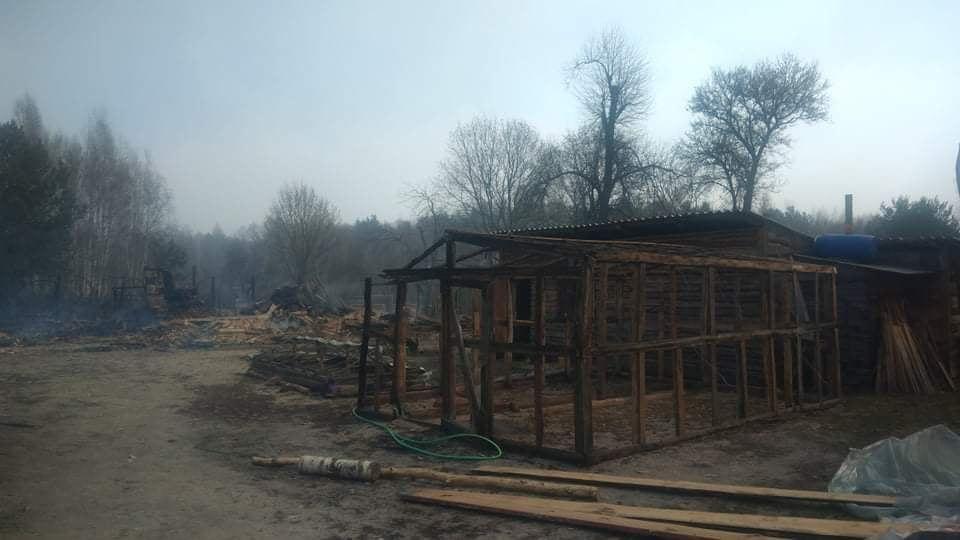 Наслідки пожежі у Житомирській області, село Личмани_3