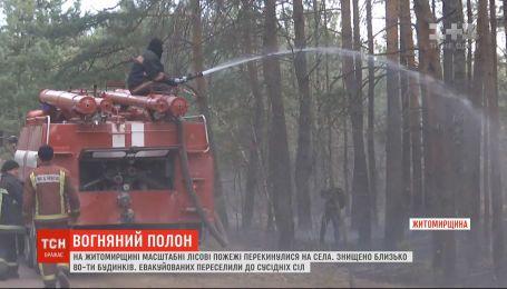 У що масштабні пожежі у Житомирській області перетворили довколишні села