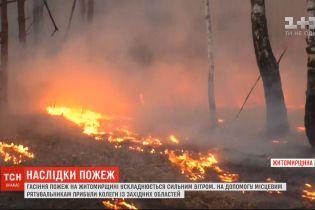 Гасіння пожеж у Житомирській області ускладняється сильним вітром
