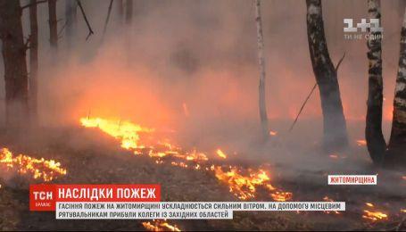 Тушение пожаров в Житомирской области осложняется сильным ветром