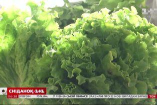 Ранние овощи: какого они качества и по карману ли они украинцам