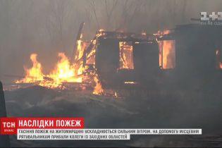 Урядовці запланували виплатити компенсації людям, які постраждали від лісових пожеж у Житомирській області