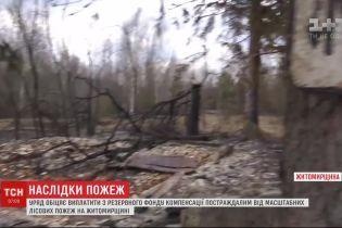 Выплаты из резервного фонда: правительство планирует компенсировать убытки сельчанам, пострадавшим от пожаров