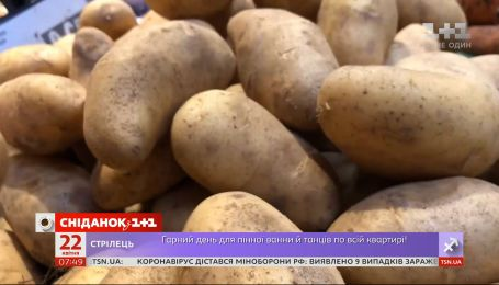 В очікуванні нового врожаю: в Україні здешевшала картопля