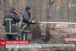 Наслідки пожежі: у Житомирській області рятувальникам досі не вдається загасити тління трави
