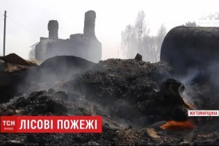 У Житомирській області тліє: поліція розглядає кілька версій займання лісу