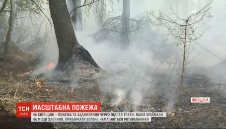 У Київській області через підпал вигоріло щонайменше два гектари сухої трави