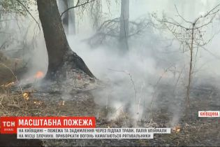 В Киевской области из-за поджога выгорело минимум два гектара сухой травы