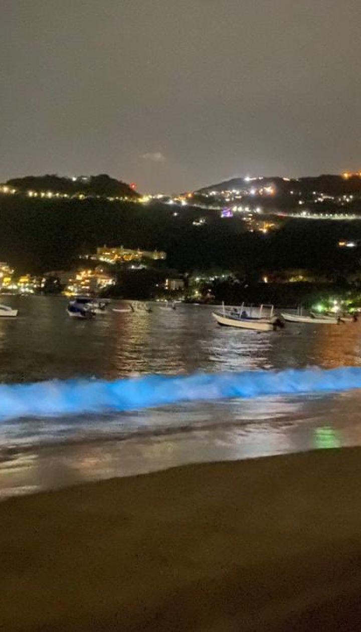 """У Мексиці вперше за 60 років узбережжя """"засвітилося"""" неоново-синім кольором"""