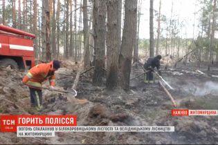 В Житомирской области люди напуганы, что огонь из лесов может перекинуться на дома