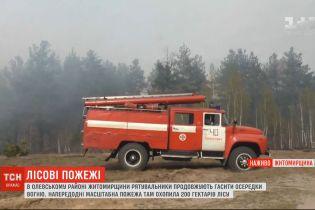 Лісові пожежі в Житомирській області: рятувальники продовжують гасити осередки вогню
