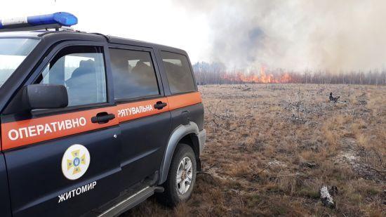 Пожежі в Житомирській області: горів ліс у природному заповіднику