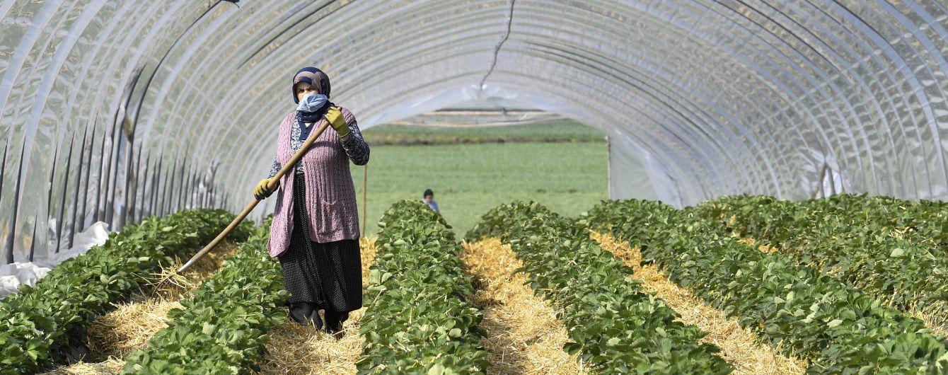 Чехія подовжила термін дії дозволів на працевлаштування для іноземців - є умова