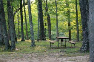 У Херсонській області заборонили на травневі свята проводити пікніки у лісах