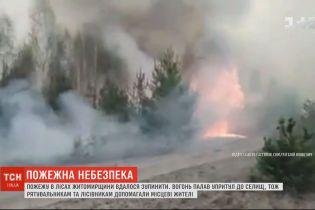 В Житомирской области продолжают тушить лесные пожары