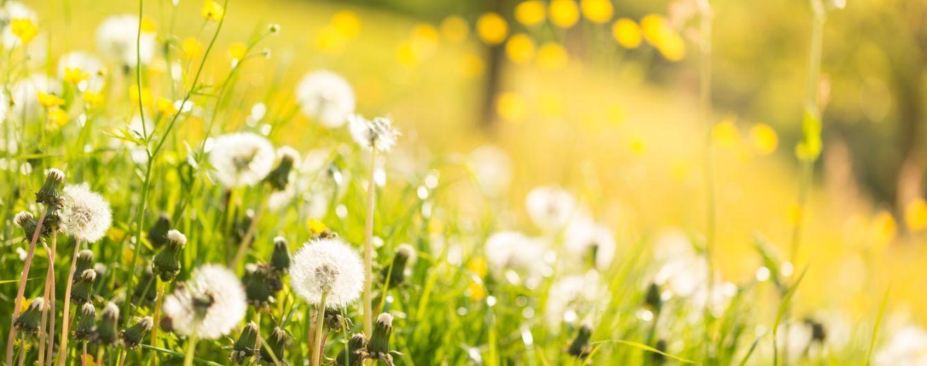 Від літньої спеки до дощової прохолоди. Яка погода очікується в Україні протягом тижня