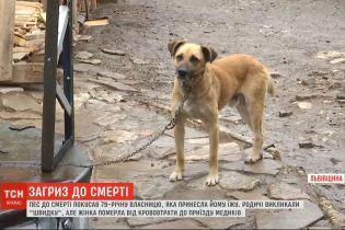 Во Львовской области пес до смерти покусала 79-летнюю женщину, которая принесла ему есть