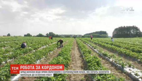 Правительство Украины ведет переговоры с другими странами, которые хотят привлечь украинцев к сезонным работам