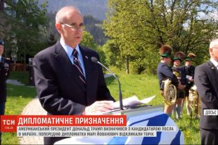 В США определились с кандидатом на должность посла в Украине
