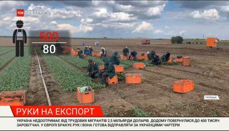Руки на експорт: попри закриті кордони, українських заробітчан кличуть на роботу до Європи