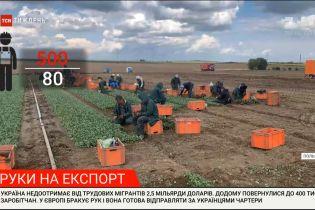 Руки на экспорт: несмотря на закрытые границы, украинских заробитчан зовут на работу в Европу