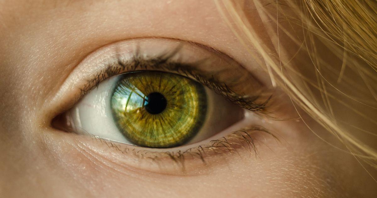 Ученые смогли предсказать слепоту из-за глаукомы за полтора года до ее появления: помог искусственный интеллект