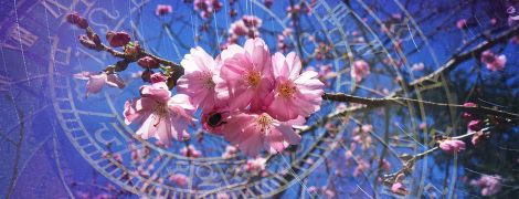 Что звезды нам пророчат: гороскоп на 4-10 мая