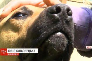 В Одесі патрульні стріляли у пса поблизу дитячого майданчика