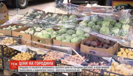 Цены на овощи: сколько огородина стоит на рынках и когда будет удешевление