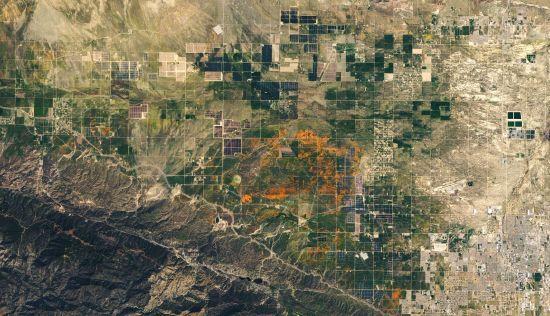 NASA зробило приголомшливий знімок суперцвітіння макових полів у Каліфорнії