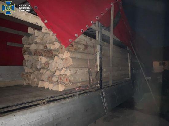 На Закарпатті СБУ викрила масштабну схему контрабанди лісу до Євросоюзу