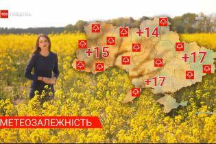 Метеозависимость: какой будет погода в Украине на следующей неделе