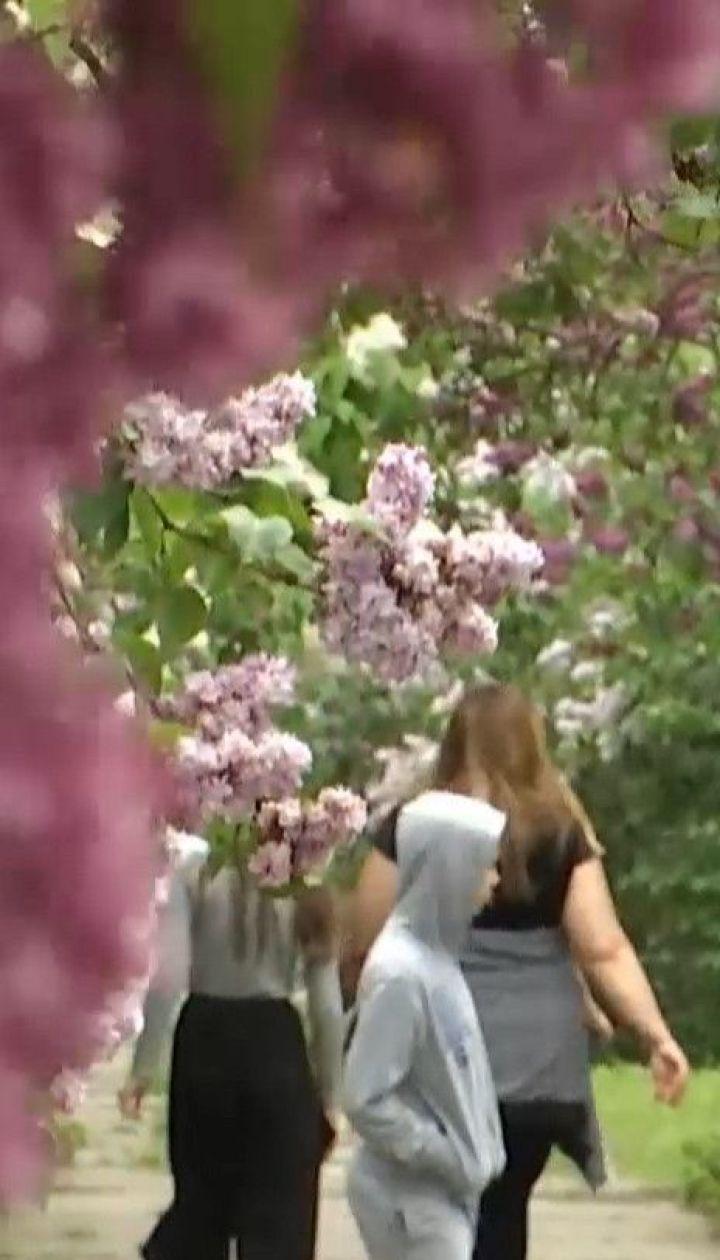 Аншлаги в салонах красоты и очереди в ботаническом саду: что происходит в столице в первый день ослабления карантина