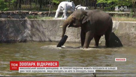В Николаеве после ослабления карантина открылся зоопарк