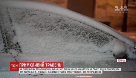 Метель и ветрюган - с запада на Украину ожидает непогода