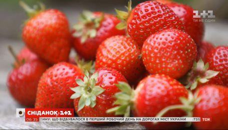 Сезон полуниці: скільки коштує перша ягода та як обрати найсмачнішу