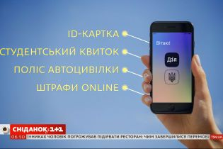 """Личные данные украинцев попали в сеть: может ли быть причастно к этому приложение """"Дія"""""""