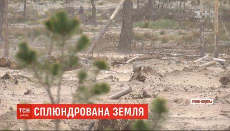 Без тварин і птахів: тисячі гектарів землі, де працювали бурштинокопачі, перетворилися на пустелі